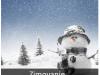 daleke-destinacije-avio-karte-letovanje-putovanje-izleti-novagodina-2019-banje-zimovanje-surcin-prizma-travel-turisticka-agencija-003